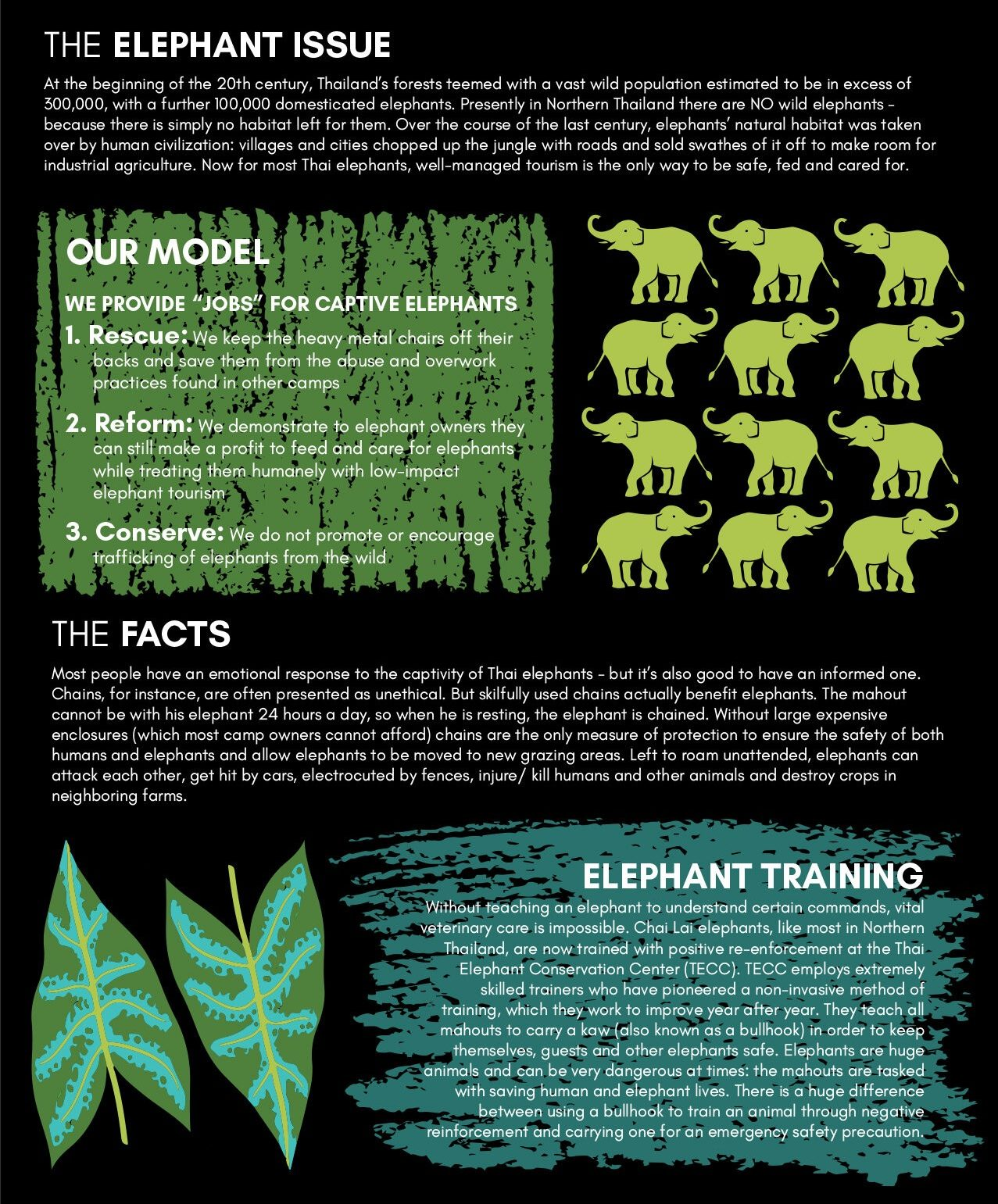 Elephant Ethics GraphicElephant Ethics GraphicElephant Ethics Graphic