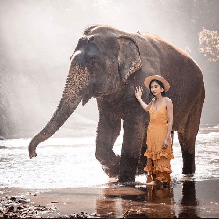 travel blogger walks with an elephant