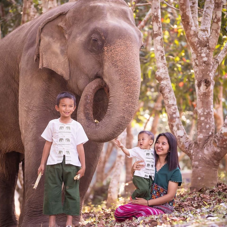 Nukul feeding elephants with her kids