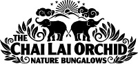 elephant jungle logo
