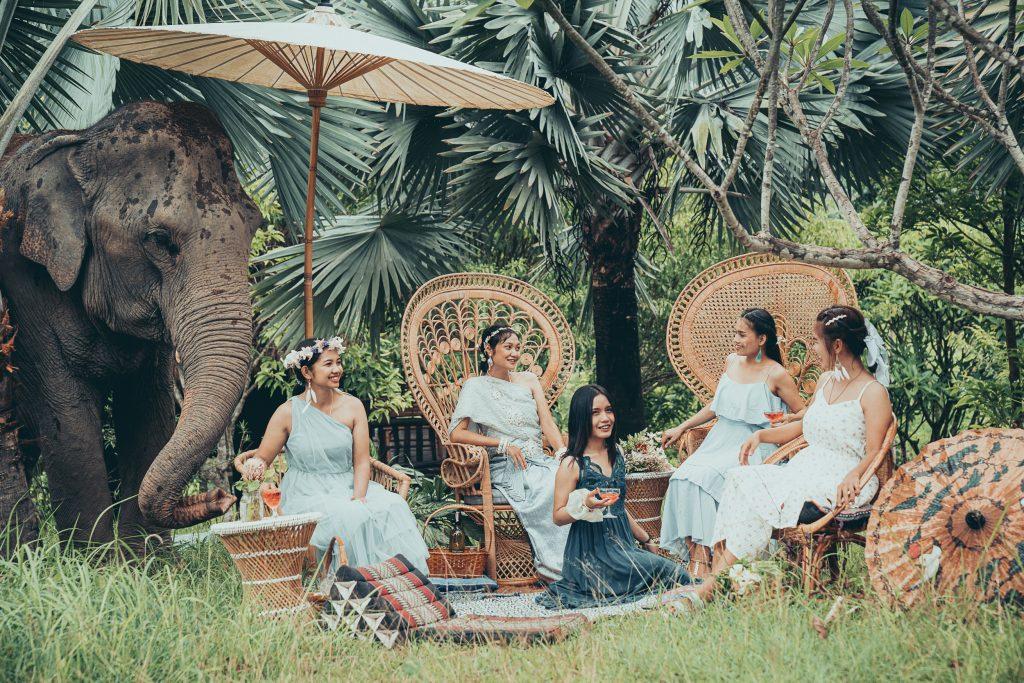 Thai tea with elephant
