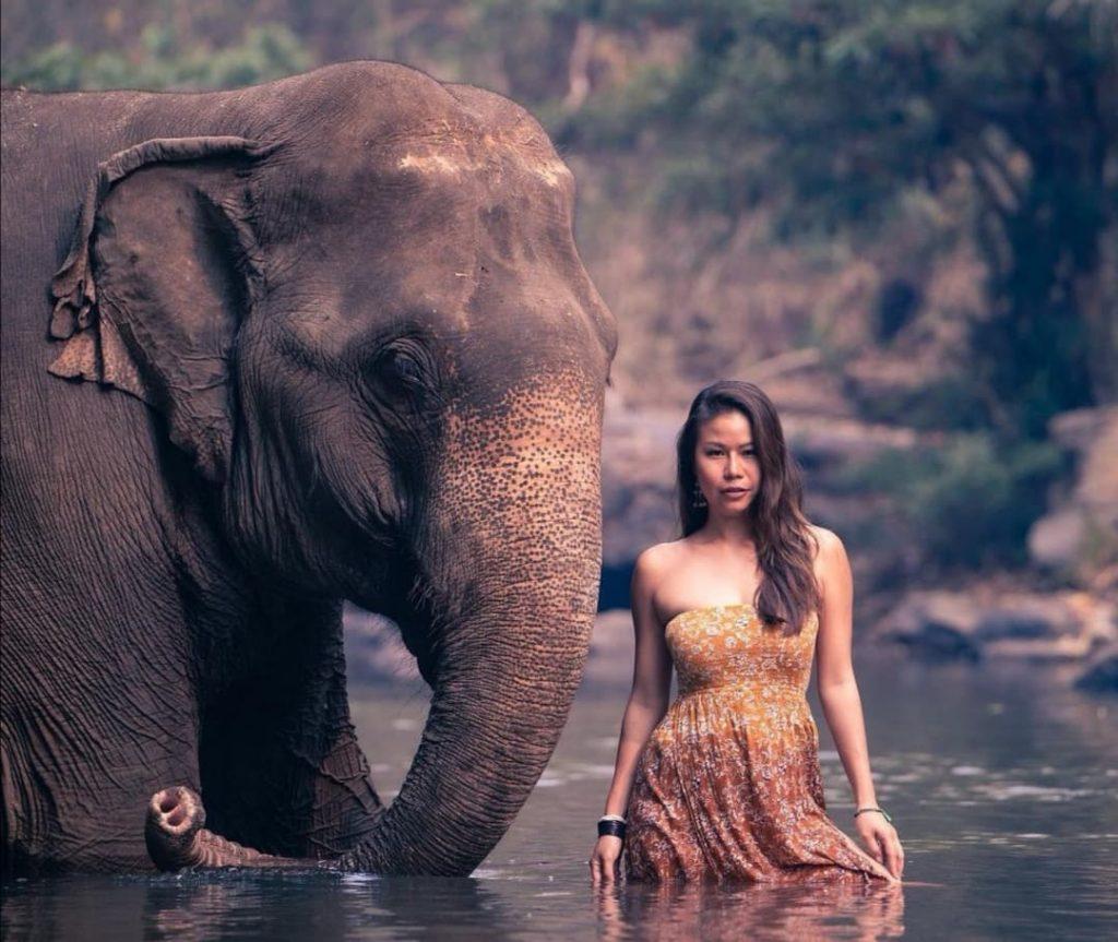 a thai woman and an asian elephant