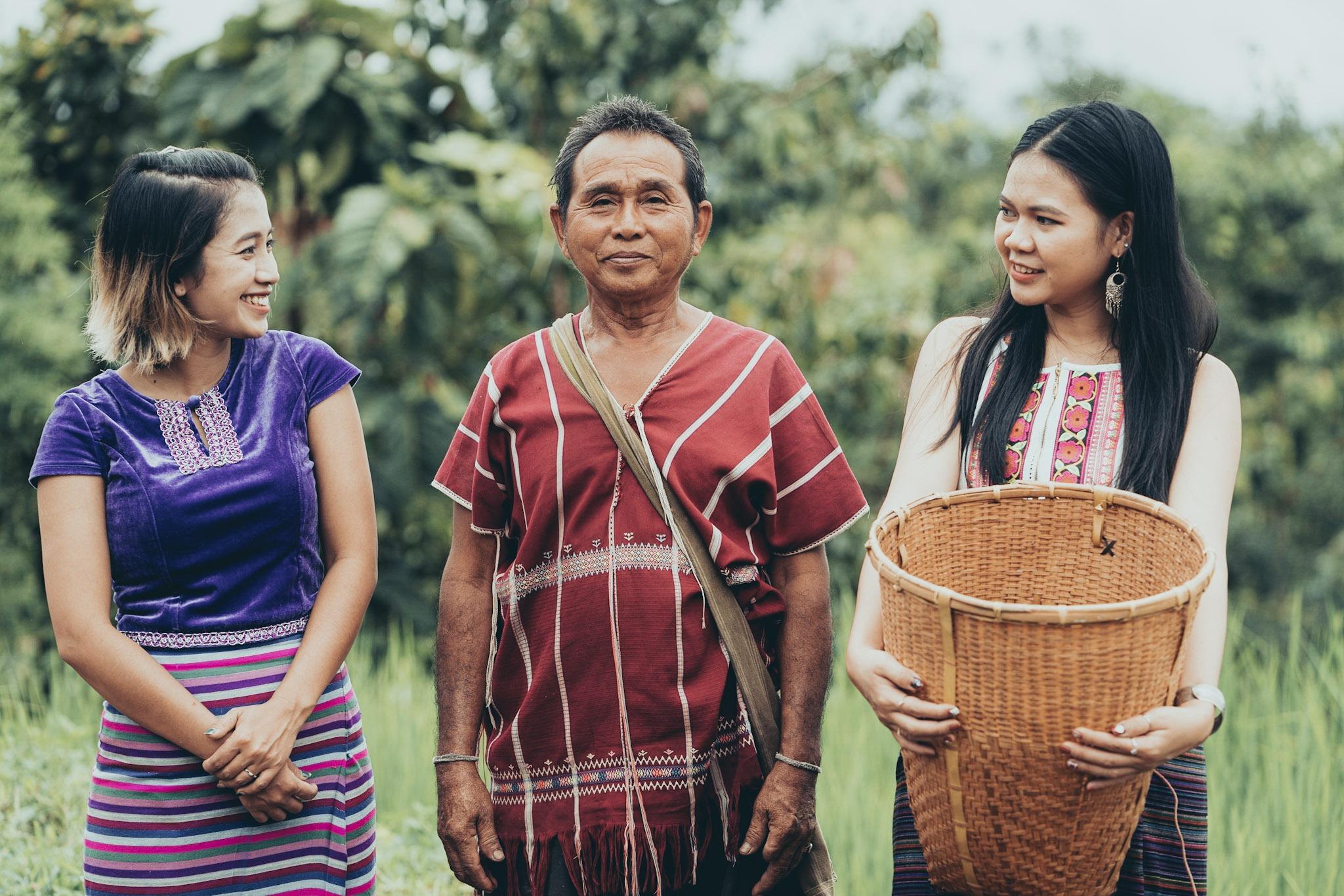 rice field farm