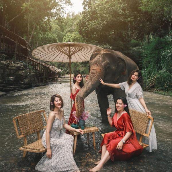 Chai Lai elephant cafe
