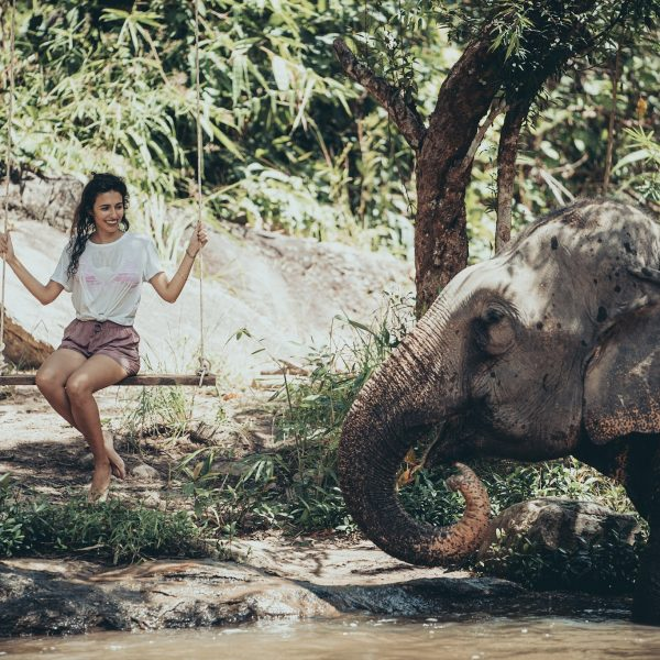 swimming with elephants at Chai Lai