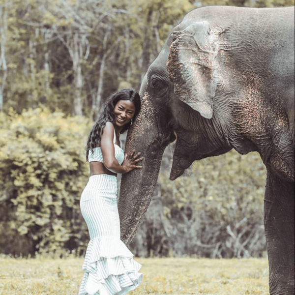 a guest laughs with an elephant