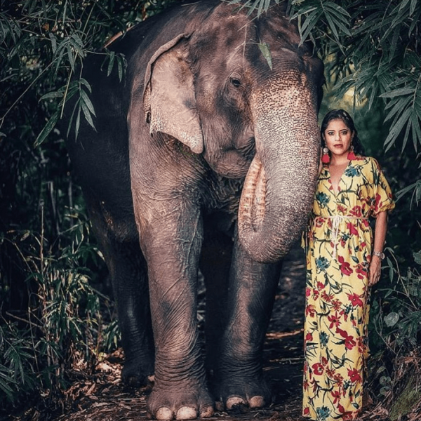 travel blogger with an elephant in the bamboo