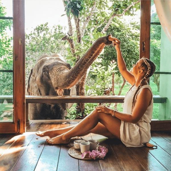chai lai elephant hotel room
