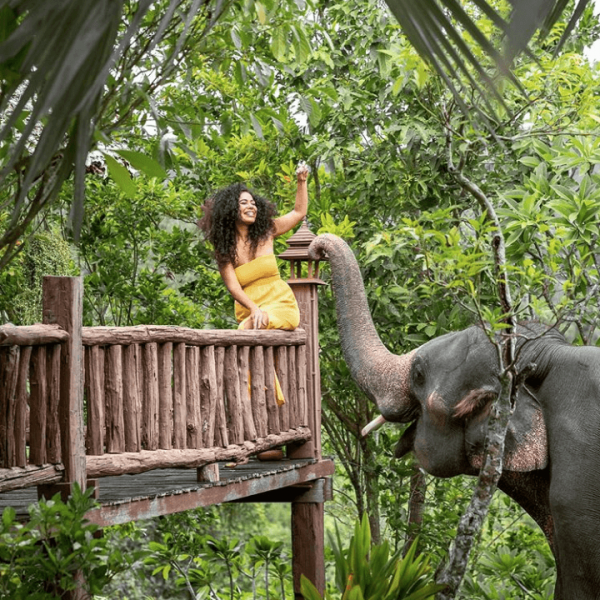 Yoga instructor feeding an elephant